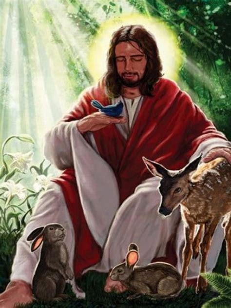imagenes de jesucristo ayudando lista jes 250 s y el amor por los animales