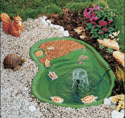 vasche per tartarughe d acqua equipaggiare l area giochi delle tartarughe