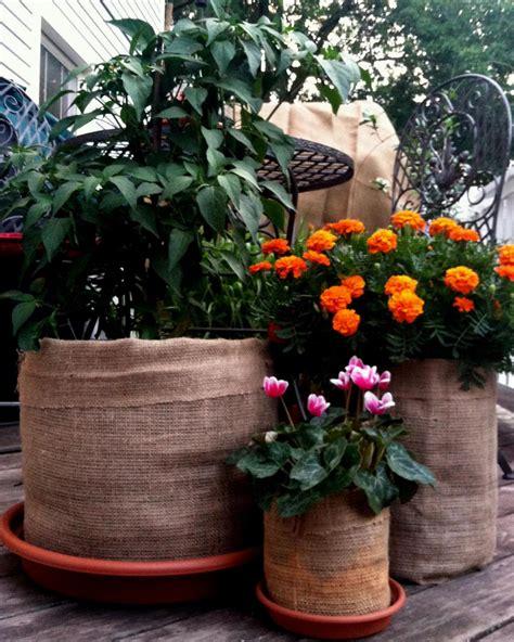 Burlap Bag Planter by Budget Friendly Burlap Planter Diy Network Made