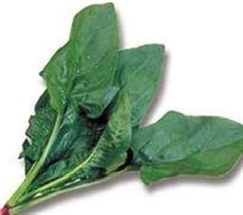 alimenti contengono ossalati verdure ricche di calcio il calcio negli alimenti 2018