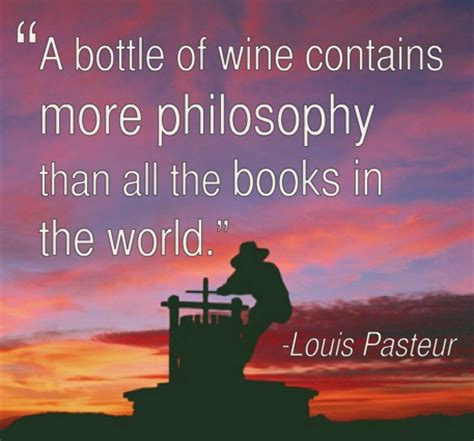 chardonnay minx quotes it books 18 best images about wine quotes on a smile