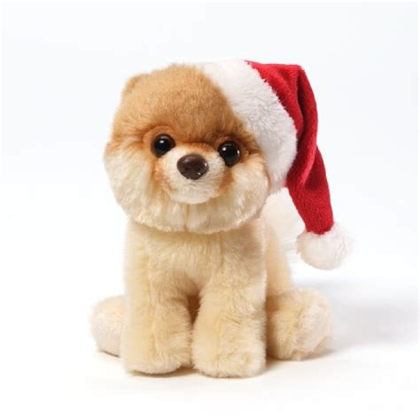 boo the dog christmas itty bitty boo in santa hat buy in uae products in the uae see prices reviews