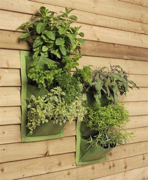 parete giardino verticale giardino verticale varie idee per l esterno e l interno