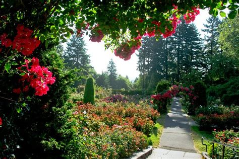 portlands international rose test garden gallery