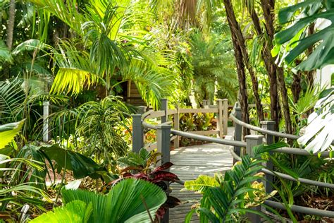 Audubon House And Tropical Gardens by Tropical Gardens Audubon House Tropical Gardens