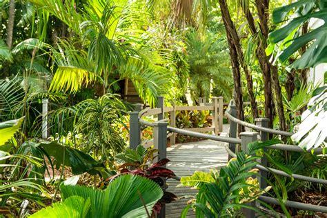 audubon house and tropical gardens tropical gardens audubon house tropical gardens