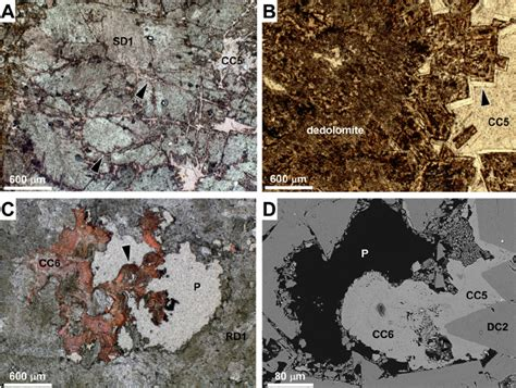 calcite cement in thin section photomicrographs of calcite cement cc5 and cc6 showing a