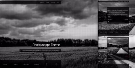blog themes for photographers 25 responsive tumblr themes for photographers