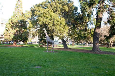 park san mateo photos of san mateo central park and teas the season