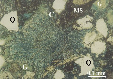 chlorite in thin section diagenetic history 3 d reservoir characterization