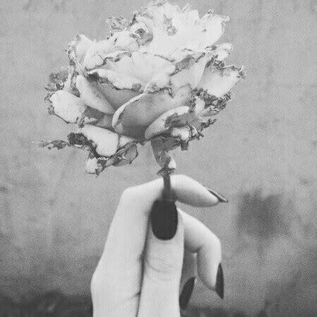 imagenes artisticas tristes flowers waste image 2735805 by saaabrina on favim com