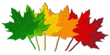 Best Design Colors fall leaves clipart best