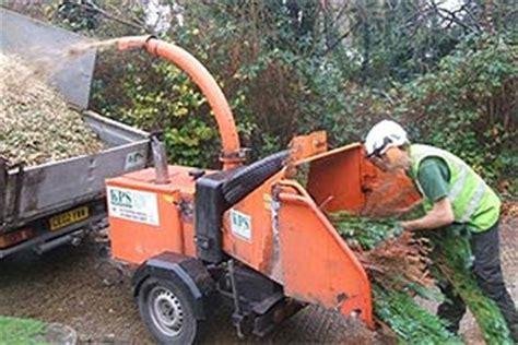 christmas tree recycling brighton hove city council