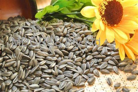 black sunflower seeds protein content black sunflower seeds products south africa black