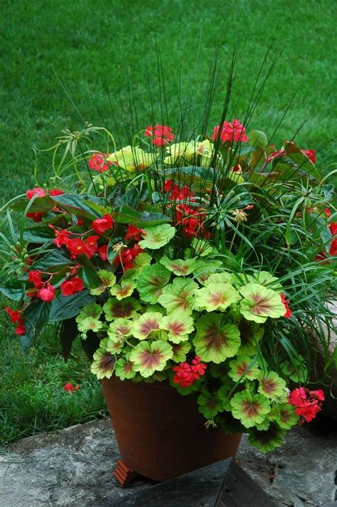 flower planters ideas flower idea gardening planters ideas flower container ideas for full sun