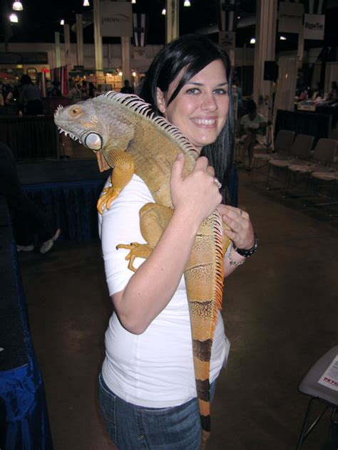 Amazing Reptile Cages #8: Reptiles-as-Pets.jpg
