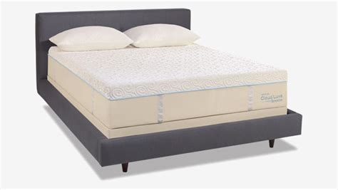 sleep number  bed  adjustable beds consumer reports