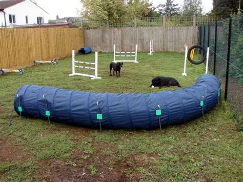 backyard agility course 17 best images about and agility jumps on for dogs pet and