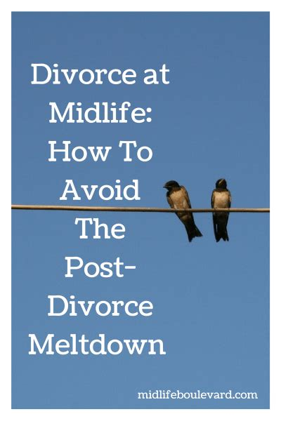 divorcing well getting through your divorce with less stress and lower costs helpful tips to protect your children your savings and your sanity books divorce at midlife how to avoid the post divorce meltdown
