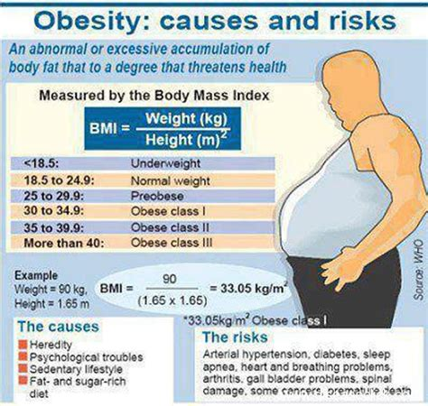 10 Causes Of Obesity by The Major Cause Of Obesity Is