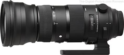 sigma 150 600mm f/5 6.3 dg os hsm sports lens review