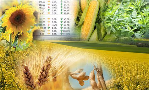 di commercio di treviso prezzi cereali i prezzi dei cereali e delle materie prime 9 14 ottobre
