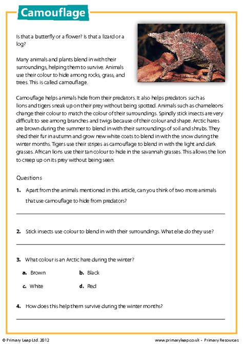 comprehension worksheets about animals camouflage reading comprehension