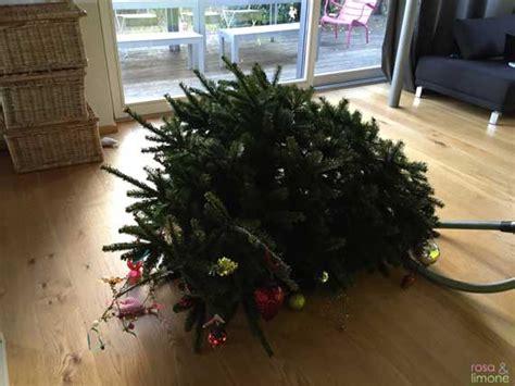 weihnachtsimpressionen mit weihnachtsunfall rosaundlimone