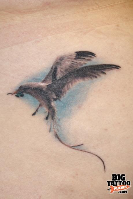 seagull tattoo designs 1000 ideas about seagull on tattoos