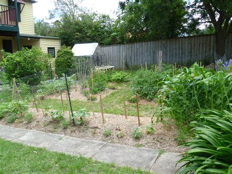 backyard poultry production backyard fascinating backyard farming on backyard