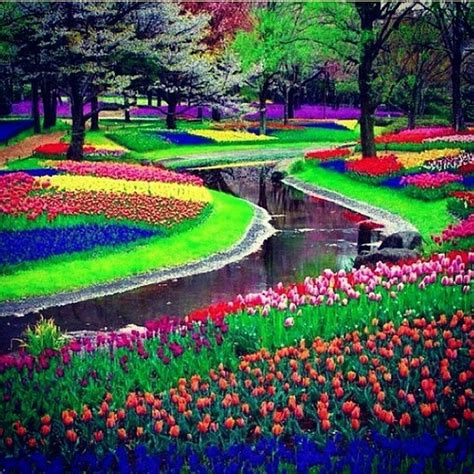 Amsterdam Flower Garden Heaven On Earth Keukenhof Garden Can We Built In Chitarl Kaghan Or Sawat