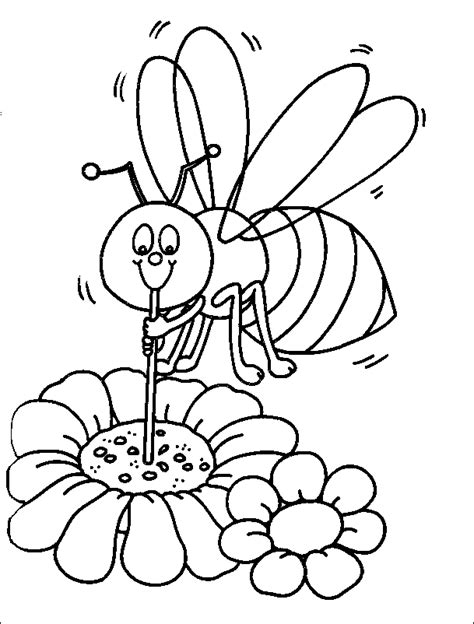 bee coloring pages coloringpagesabc