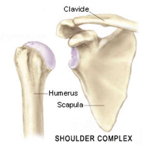 clavicle pain bench press fst функционально силовой тренинг should you bench press