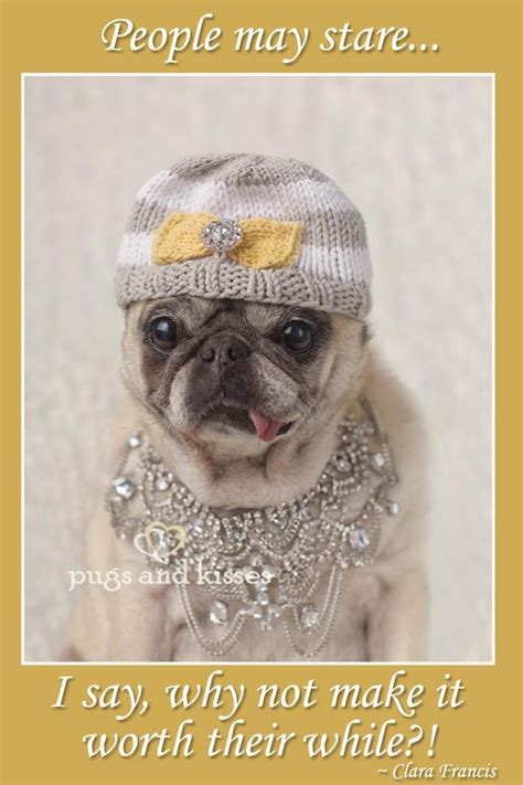 pugs and kisses pet care 432 best pugs in costume images on adorable animals adorable puppies and