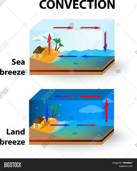 diagram of sea and land convection land and sea stock vector