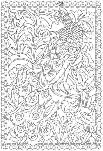 best coloring books for adults printable peacock coloring pages for adults coloringstar