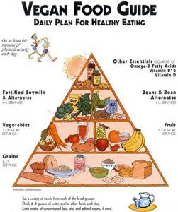 benefits of vegan food on our body and environment food