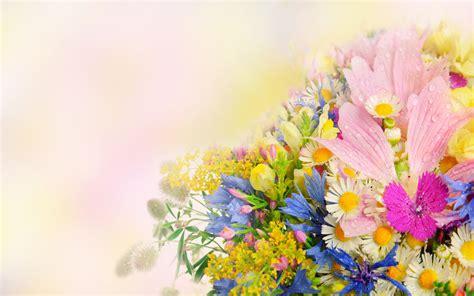 wallpaper flower mix flower full hd wallpaper and background 1920x1200 id