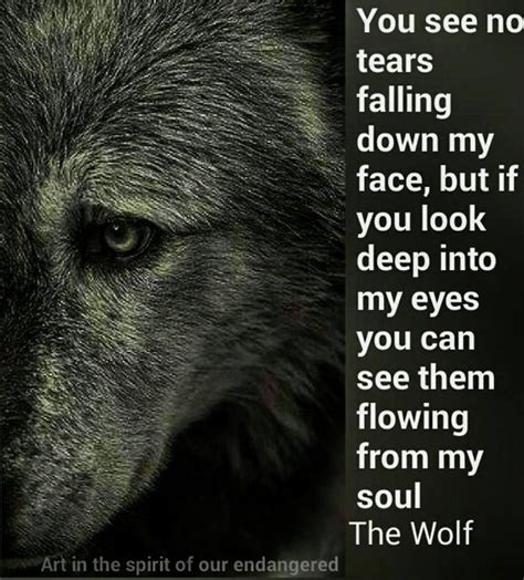 the silent pact the tale of the black covenant volume 1 books best 25 lone wolf quotes ideas on wolf quotes