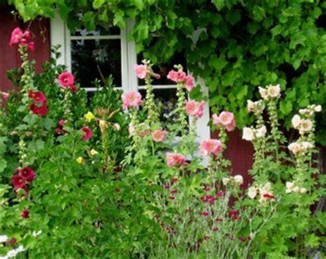 english country garden design top 10 cottage garden