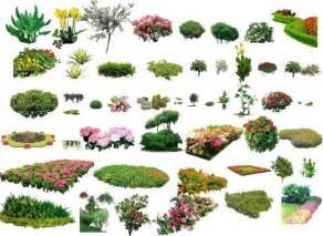 Landscape Collection Paysages Paysagisme And Arbustes On