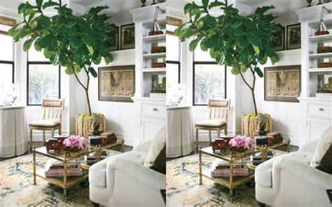 plantas de interior altas plantas de interior altas top necesitan para macetas