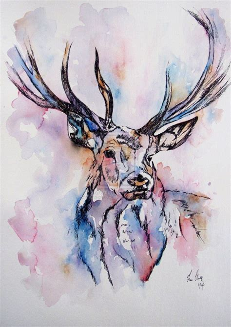 deer watercolor tattoo watercolor images of deer search painting