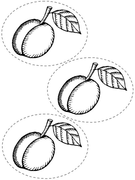 printable caterpillar template coloring home