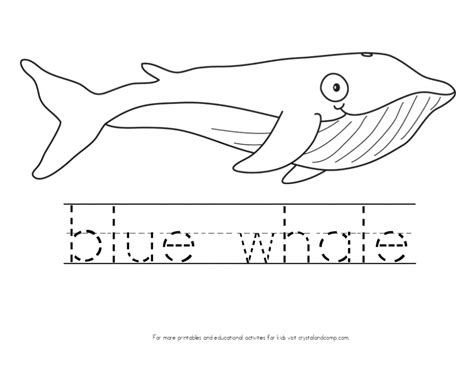 pin blue whale coloring page on pinterest