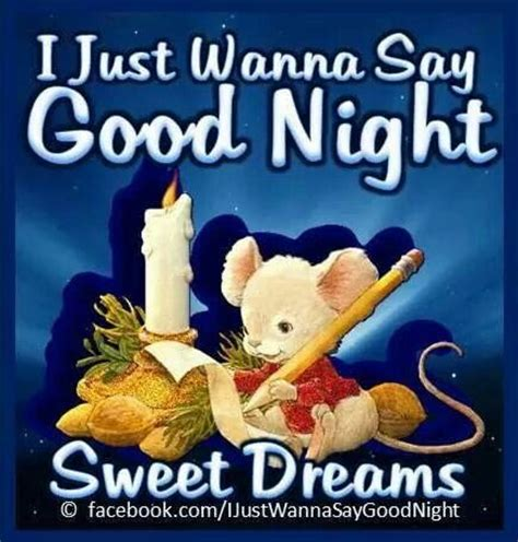 libro sweet sleep nighttime and 17 best images about good night sweet dreams on