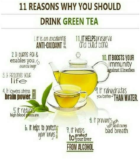 When Should I Drink Detox Tea by 11 Reason Why You Should Drink Green Tea Trusper