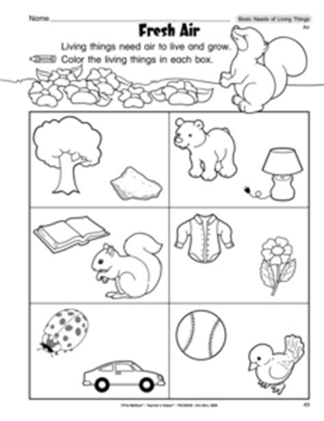 Results For Living Things Kindergarten Worksheet Reproducible Coloring Pages L