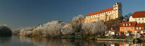 house of wettin kingdom of bulgaria house of wettin