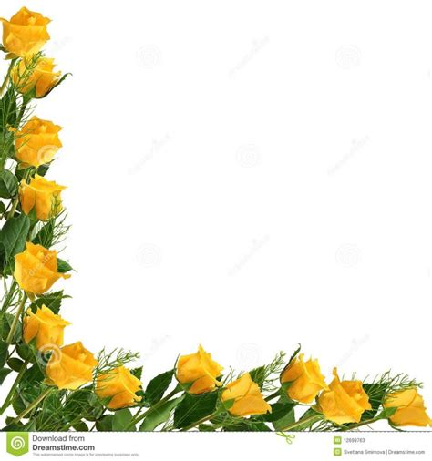 border design flower yellow yellow rose clipart gold border pencil and in color